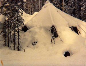 Tent lady Donna Blasor-Bernhardt lives in a MASH tent. & Alaska-WinterCabin - Tent in Tok