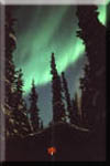 Alaskan notecard shows aurora borealis over log cabin