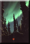 Northern Lights glow over writer's retreat in Tok, Alaska